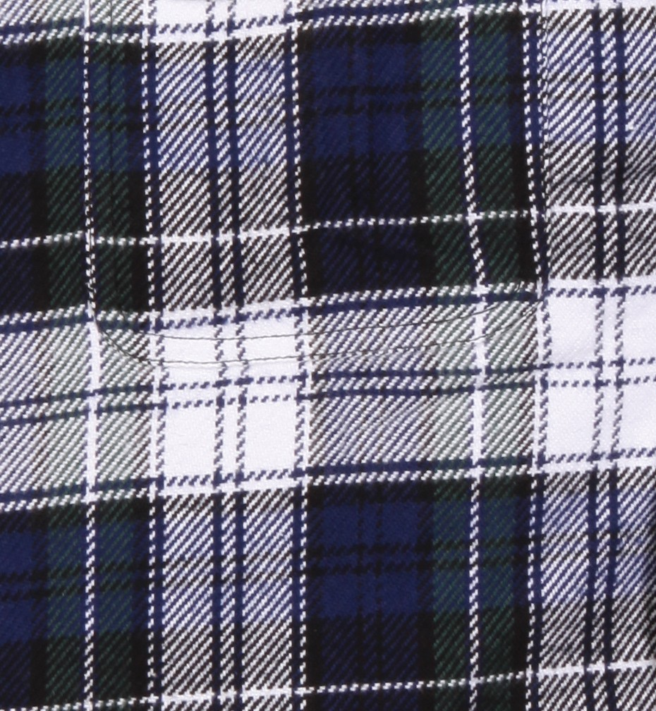 White and Blue Plaid
